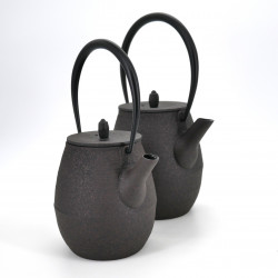 Japanese prestige high cast iron teapot, CHÛSHIN KÔBÔ NATSUME, Brown